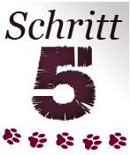 Schritt5 - Katzenkratzbaum Ratgeber